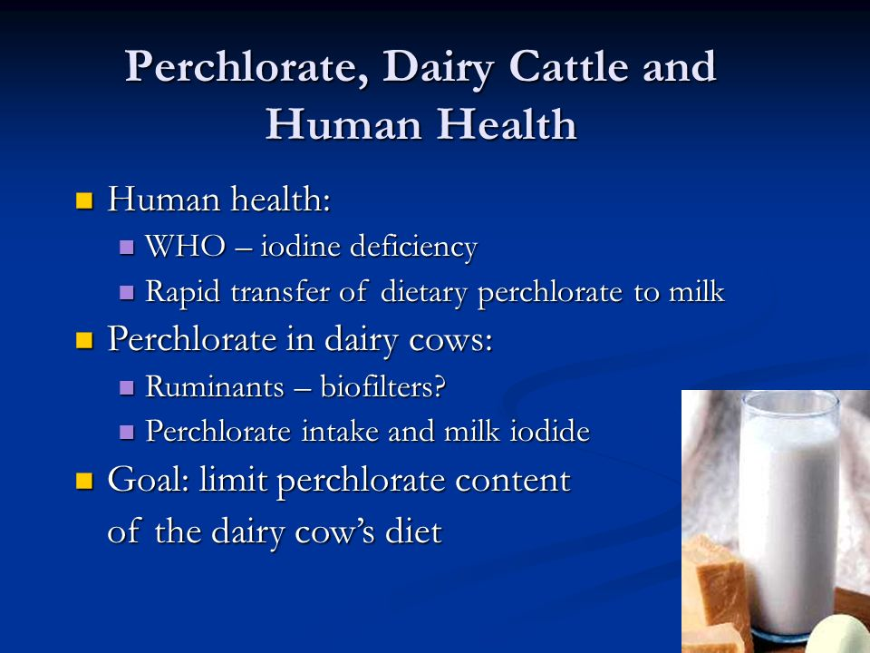 Perchlorate, Dairy Cattle and Human Health