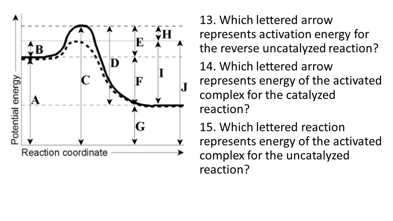 what letter represents the activation energy for the reaction aim what factors affect rate of reactions ppt 432