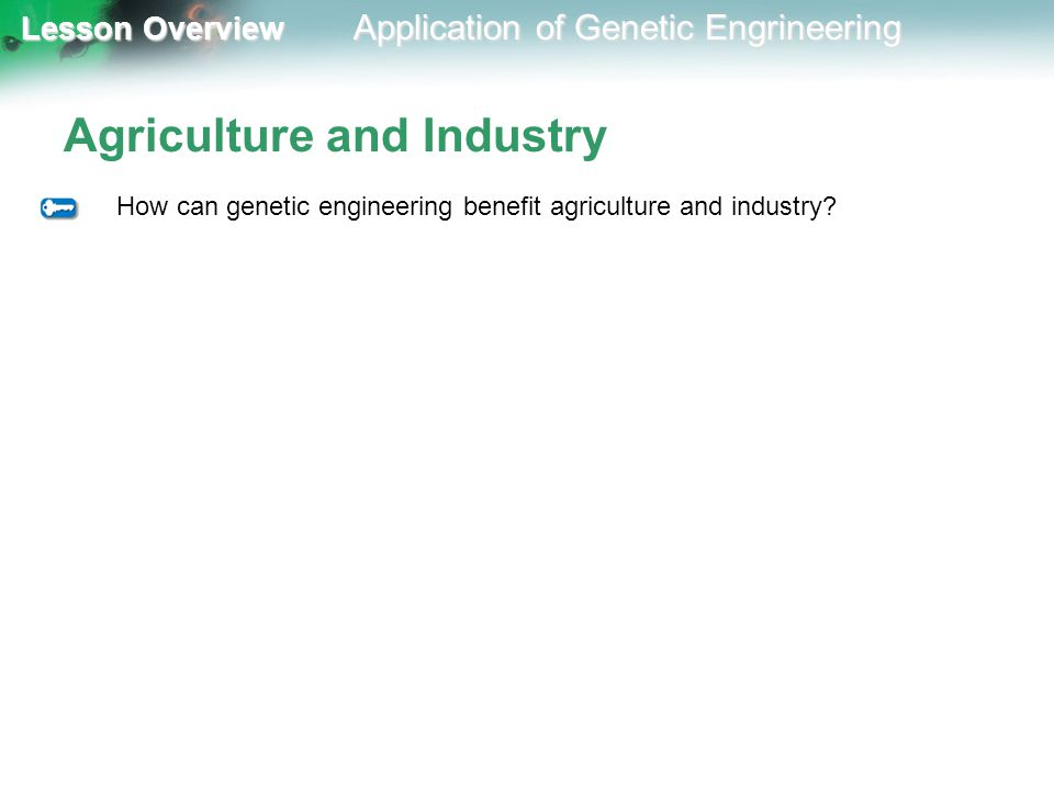 an analysis on the benefits and risks of genetic engineering The process of genetic engineering is quite tricky and risky process and you need to gather a wide variety of information before attempting to engage in the process of genetic engineering the genetic engineering process involves gene and chromosome that.