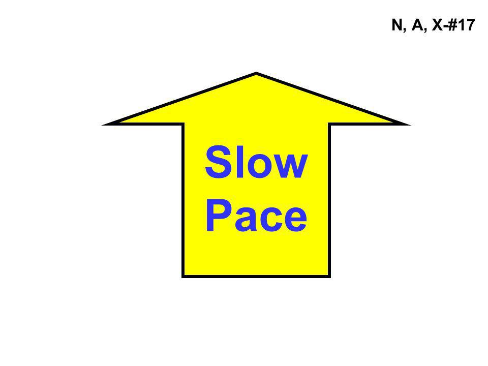 N, A, X-#17 Slow Pace