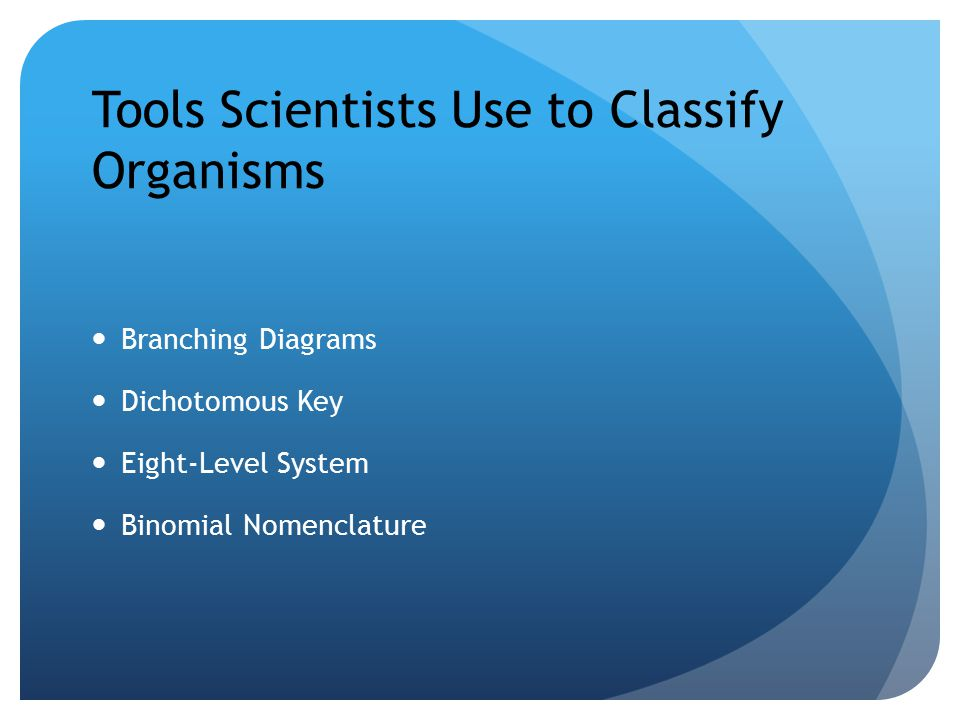 Tools Scientists Use to Classify Organisms