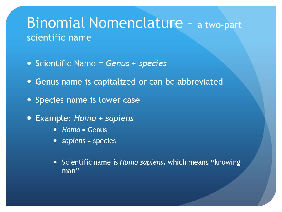 Binomial Nomenclature – a two-part scientific name
