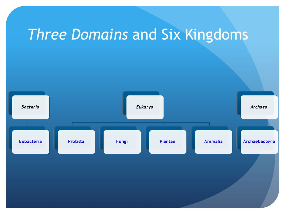 Three Domains and Six Kingdoms