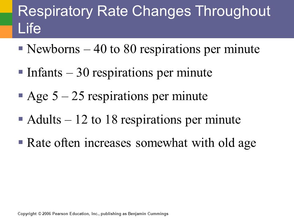Respiratory Rate Changes Throughout Life