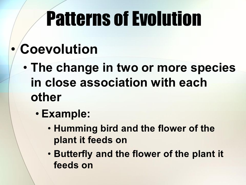Patterns of Evolution Coevolution