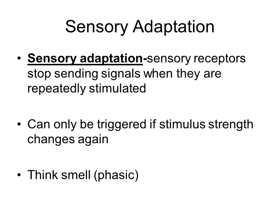 Sensory Adaptation Sensory adaptation-sensory receptors stop sending signals when they are repeatedly stimulated.