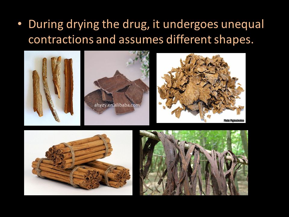 During drying the drug, it undergoes unequal contractions and assumes different shapes.
