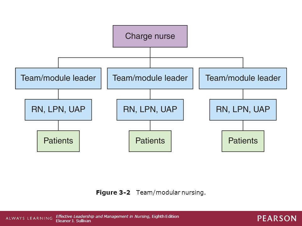 Figure 3-2 Team/modular nursing.