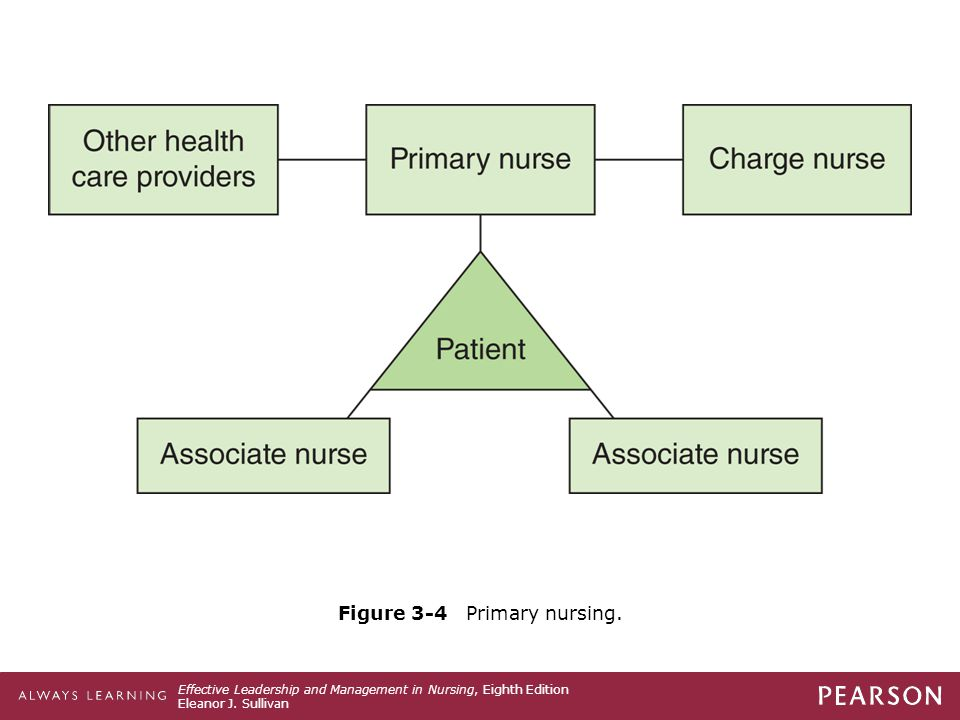 Figure 3-4 Primary nursing.