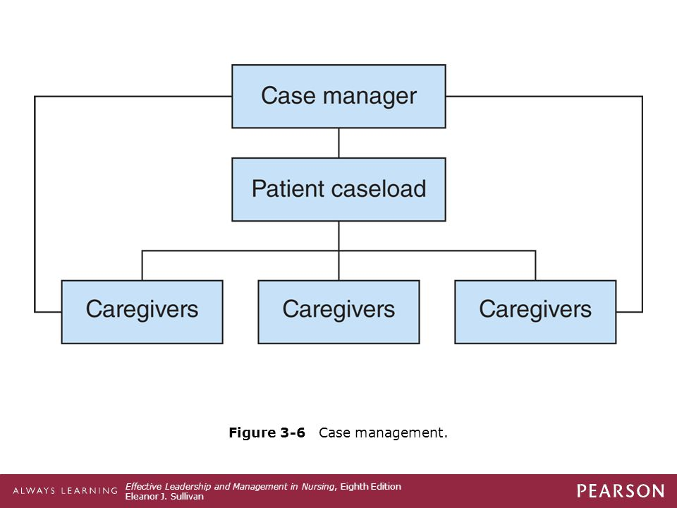 Figure 3-6 Case management.