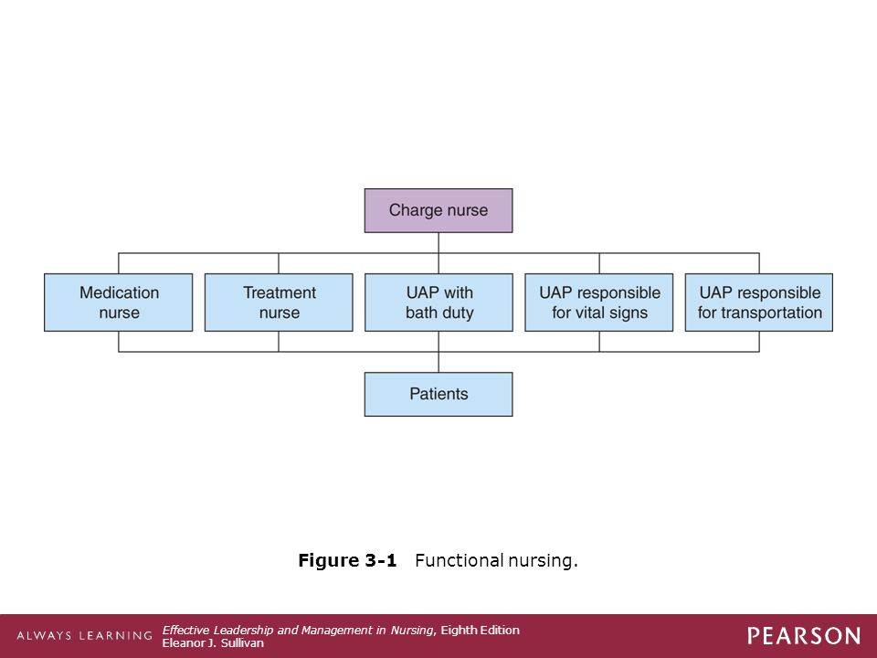 Figure 3-1 Functional nursing.