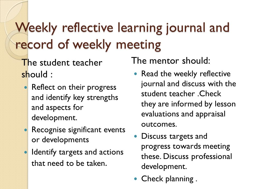 Weekly reflective learning journal and record of weekly meeting