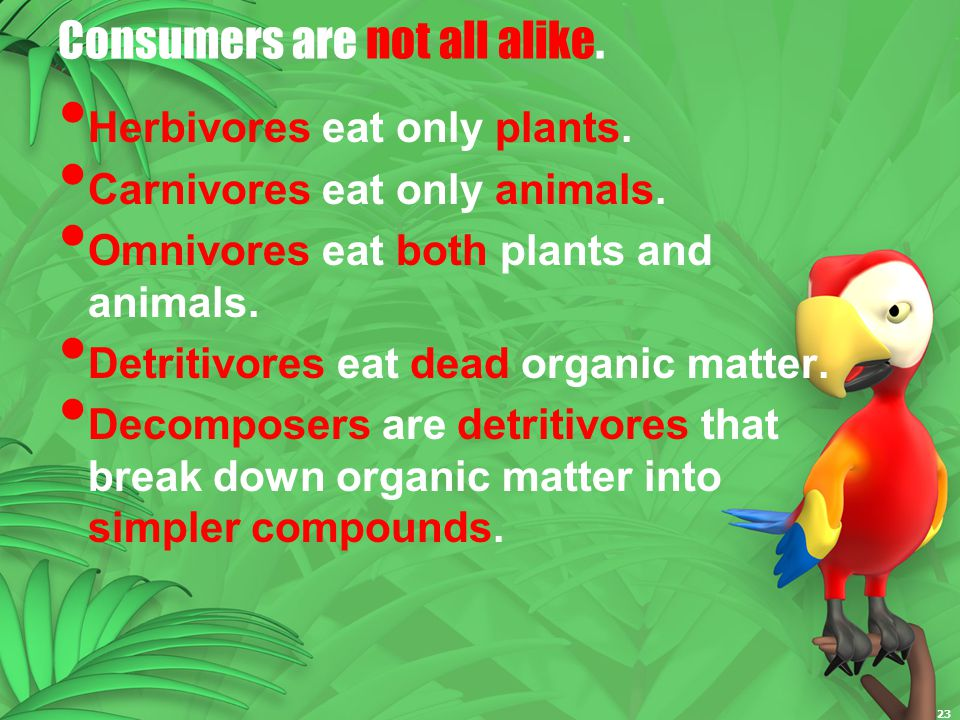 Consumers are not all alike.