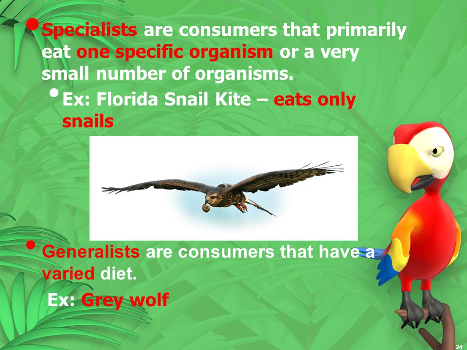 Specialists are consumers that primarily eat one specific organism or a very small number of organisms.