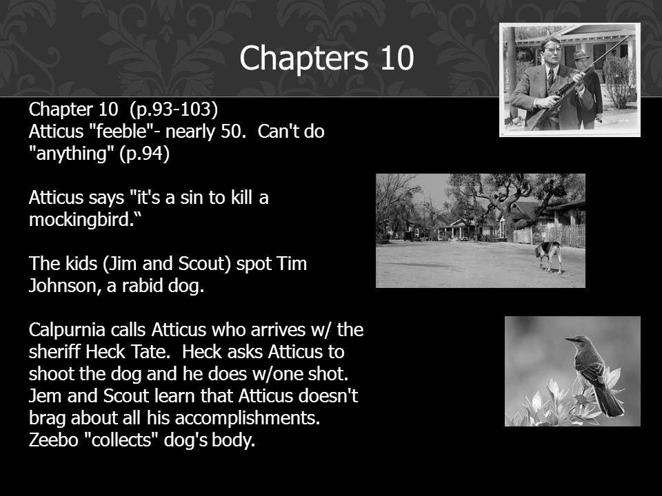 chapter 10 to kill a mockingbird summary