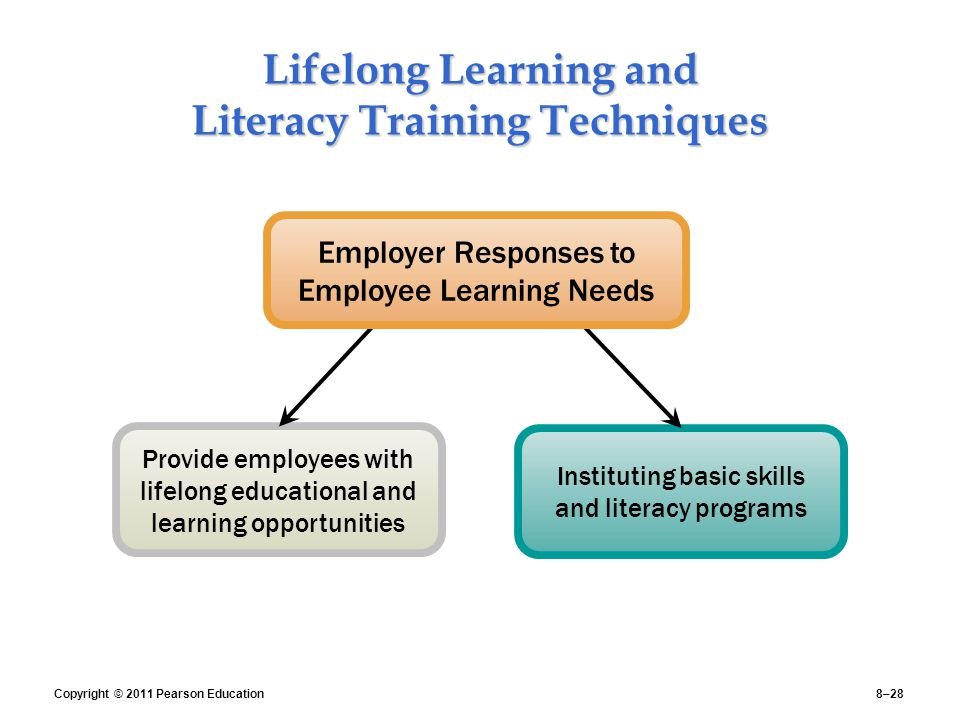 Lifelong Learning and Literacy Training Techniques