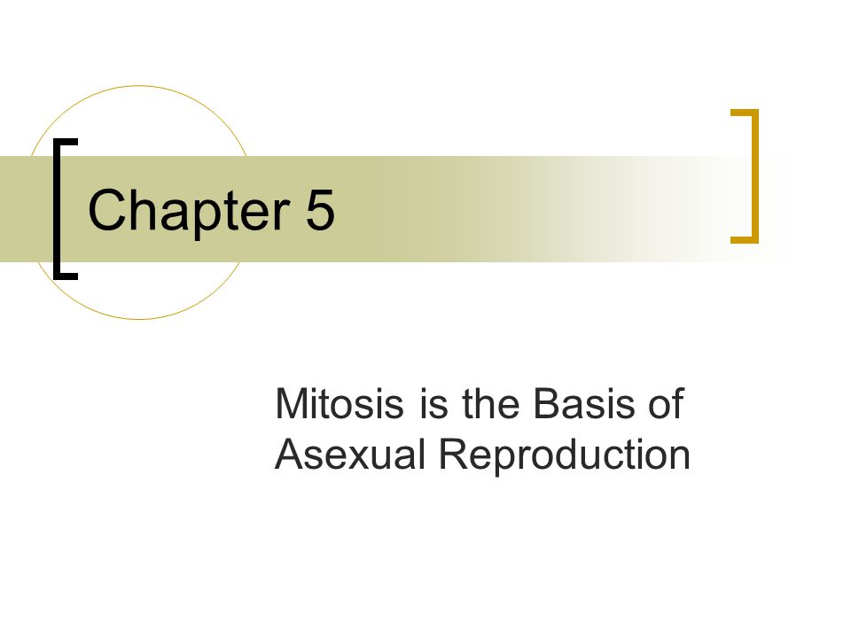 Pareri masters asexual reproduction