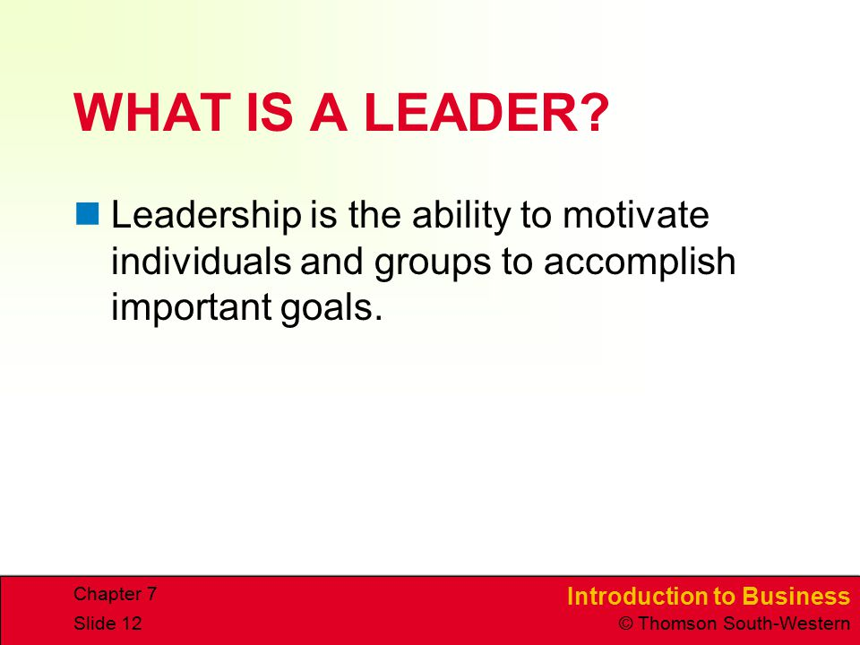 WHAT IS A LEADER Leadership is the ability to motivate individuals and groups to accomplish important goals.