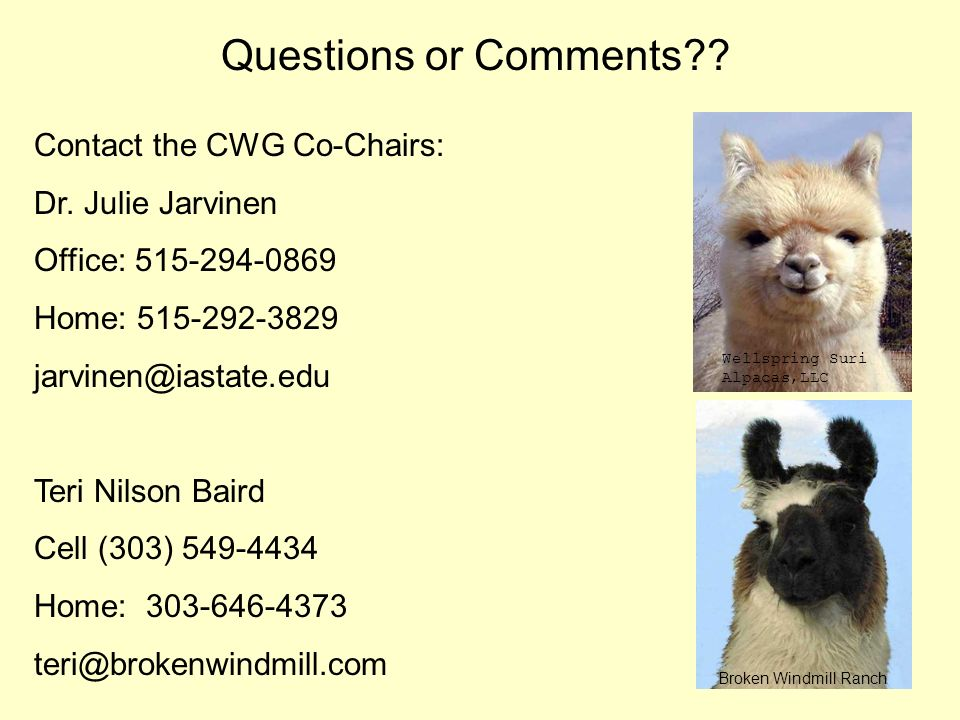 Questions or Comments Contact the CWG Co-Chairs: Dr. Julie Jarvinen