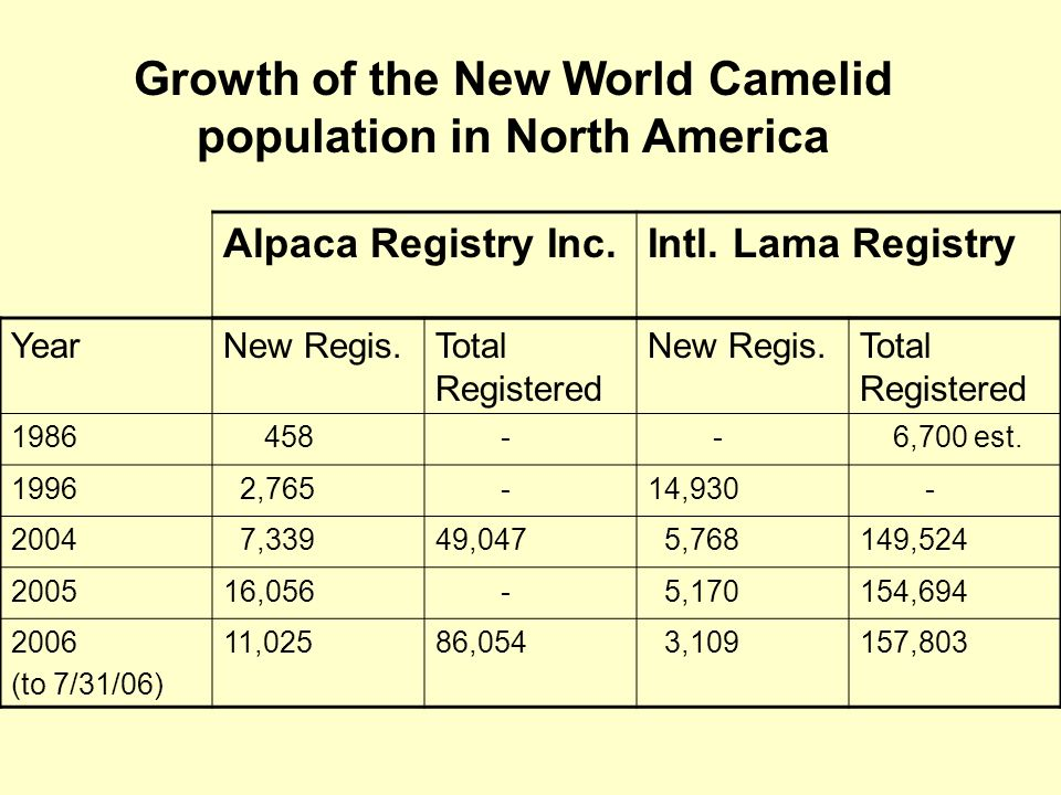 Growth of the New World Camelid population in North America