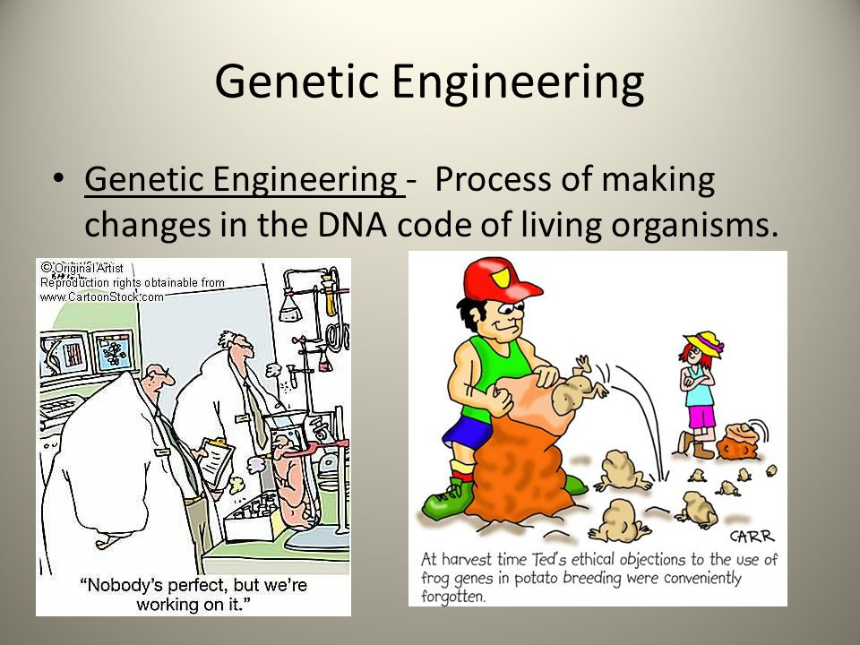 Genetic Engineering Genetic Engineering - Process of making changes in the DNA code of living organisms.