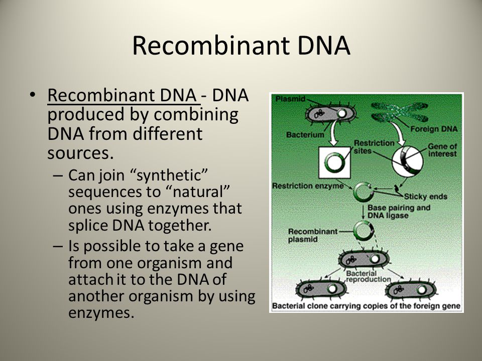 Recombinant DNA Recombinant DNA - DNA produced by combining DNA from different sources.