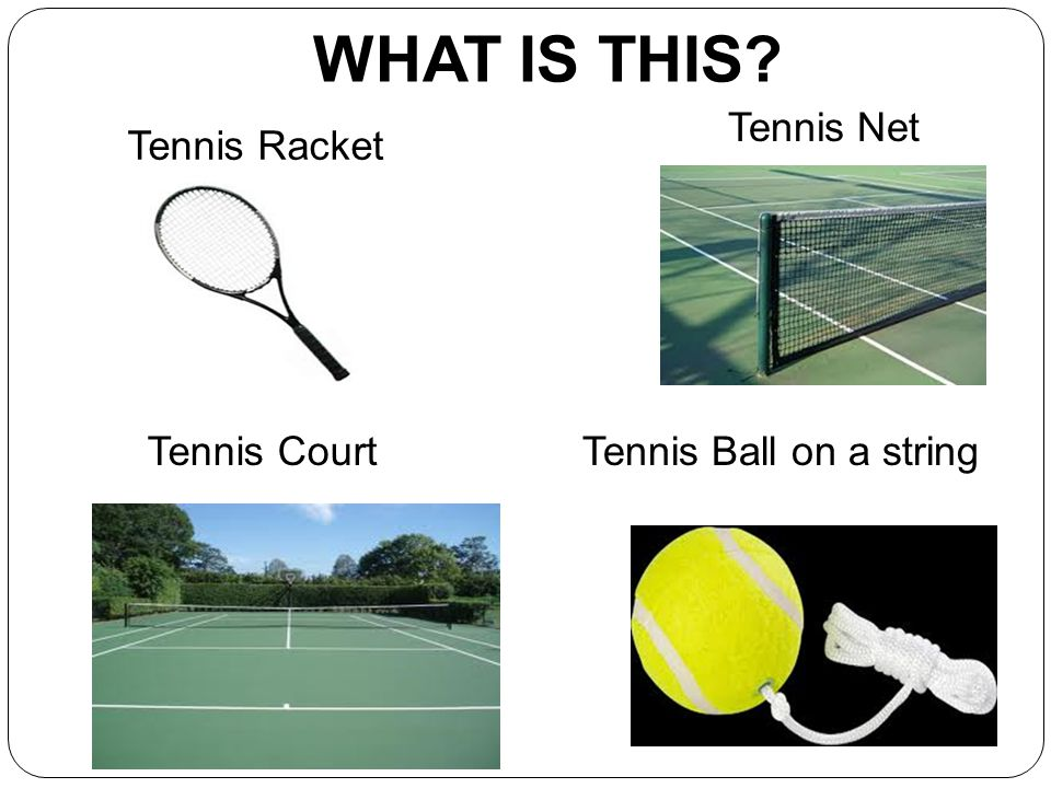 WHAT IS THIS Tennis Net Tennis Racket Tennis Court