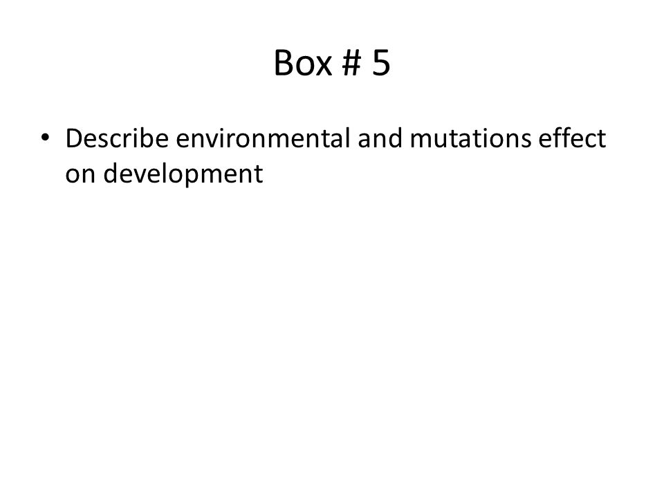 Box # 5 Describe environmental and mutations effect on development