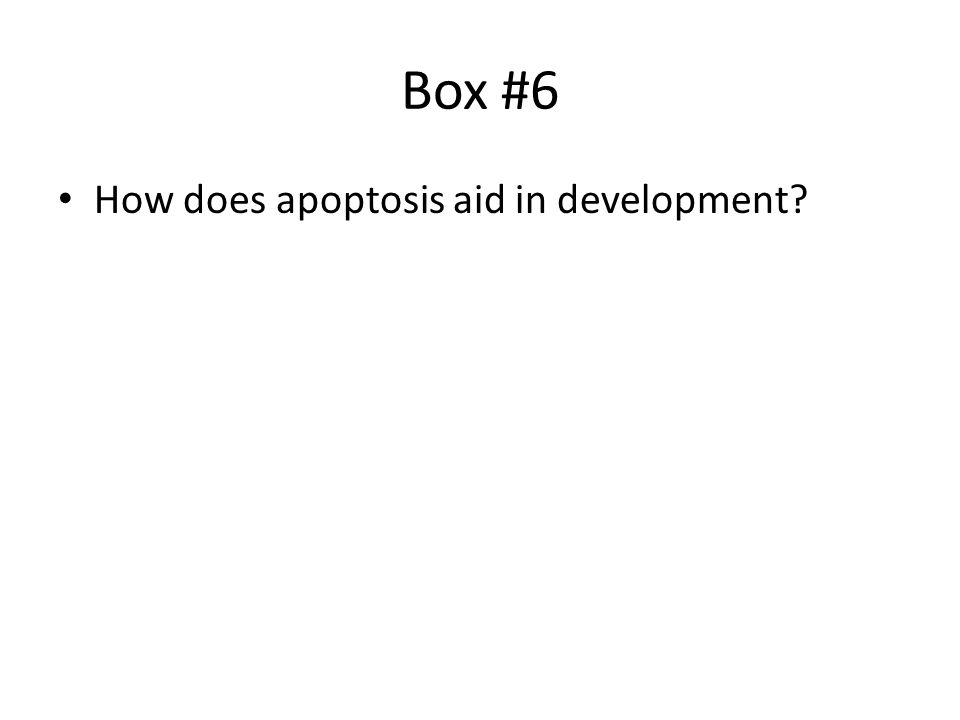 Box #6 How does apoptosis aid in development