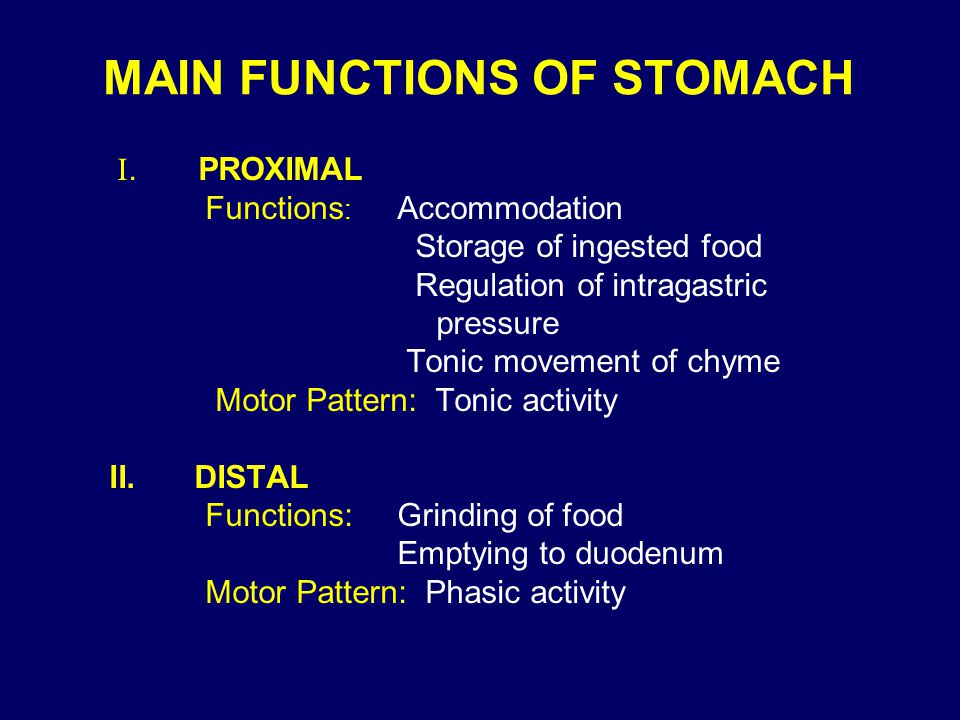 MAIN FUNCTIONS OF STOMACH
