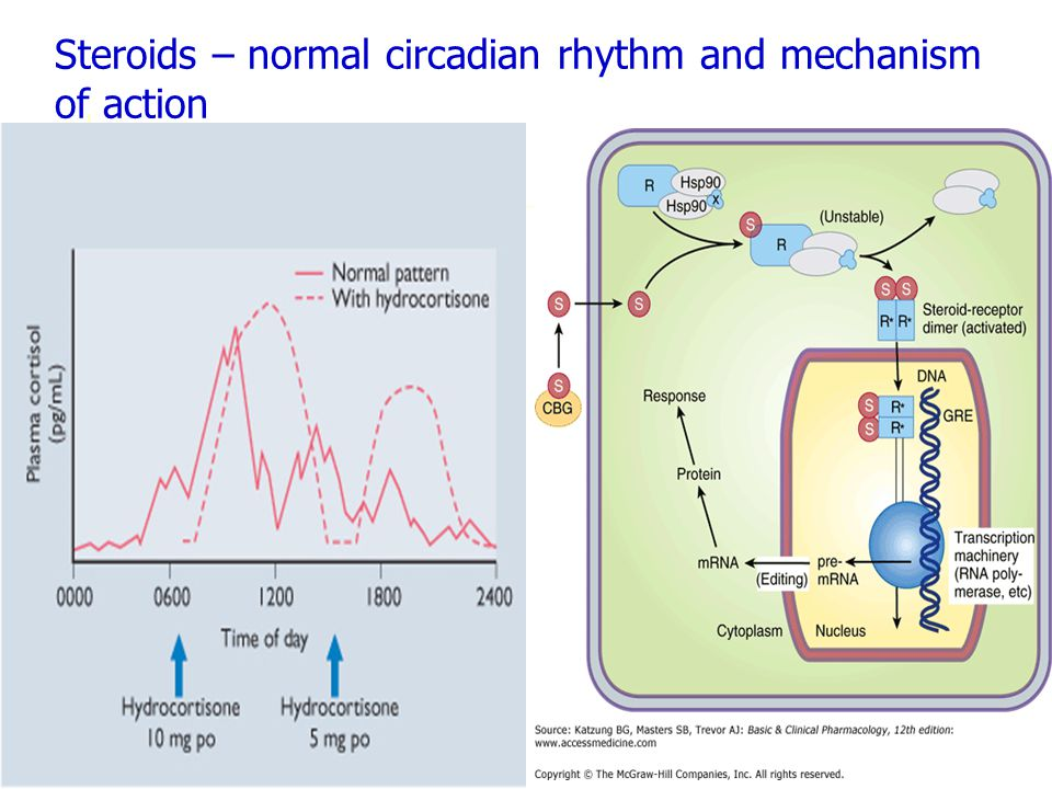 Steroids – normal circadian rhythm and mechanism of action