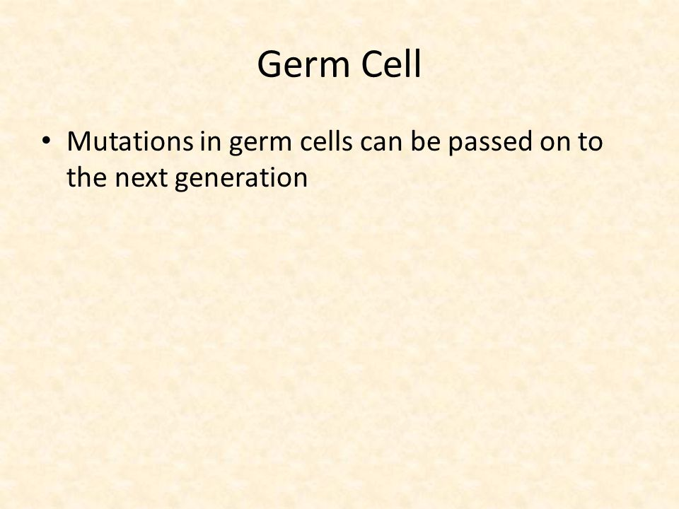 Germ Cell Mutations in germ cells can be passed on to the next generation