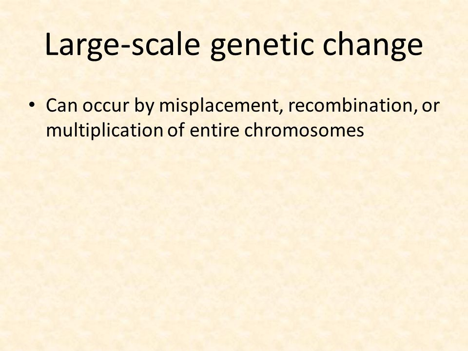 Large-scale genetic change