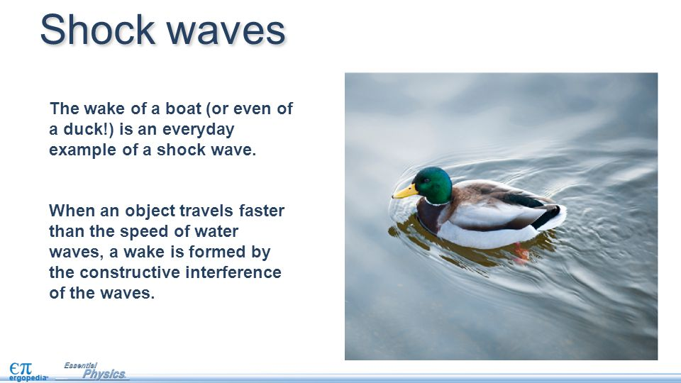Shock waves The wake of a boat (or even of a duck!) is an everyday example of a shock wave.