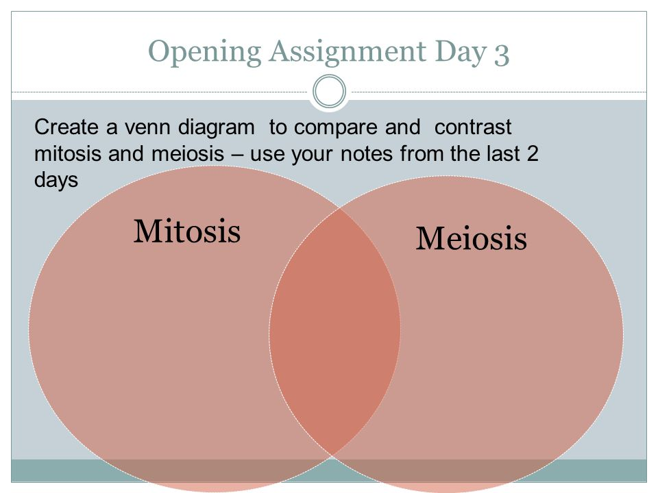 Opening Assignment Day 1 Ppt Download