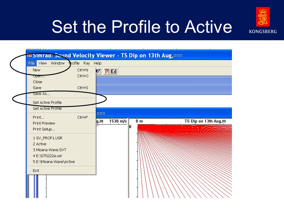 Set the Profile to Active