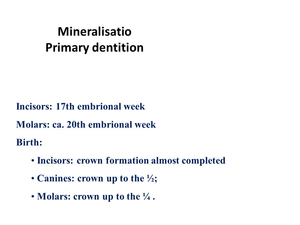Tooth Development Eruption And Anatomy Of Primary Teeth Ppt Video