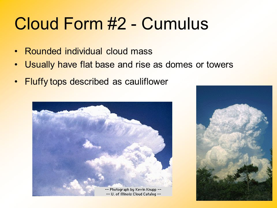 Cloud Form #2 - Cumulus Rounded individual cloud mass