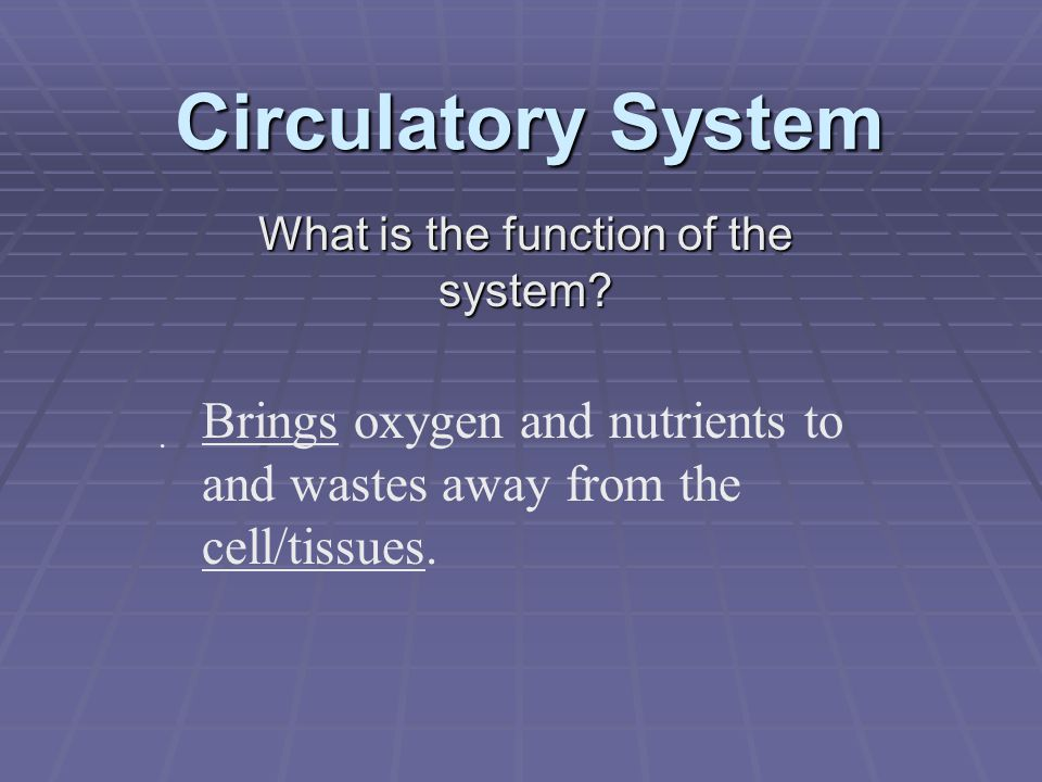 What is the function of the system