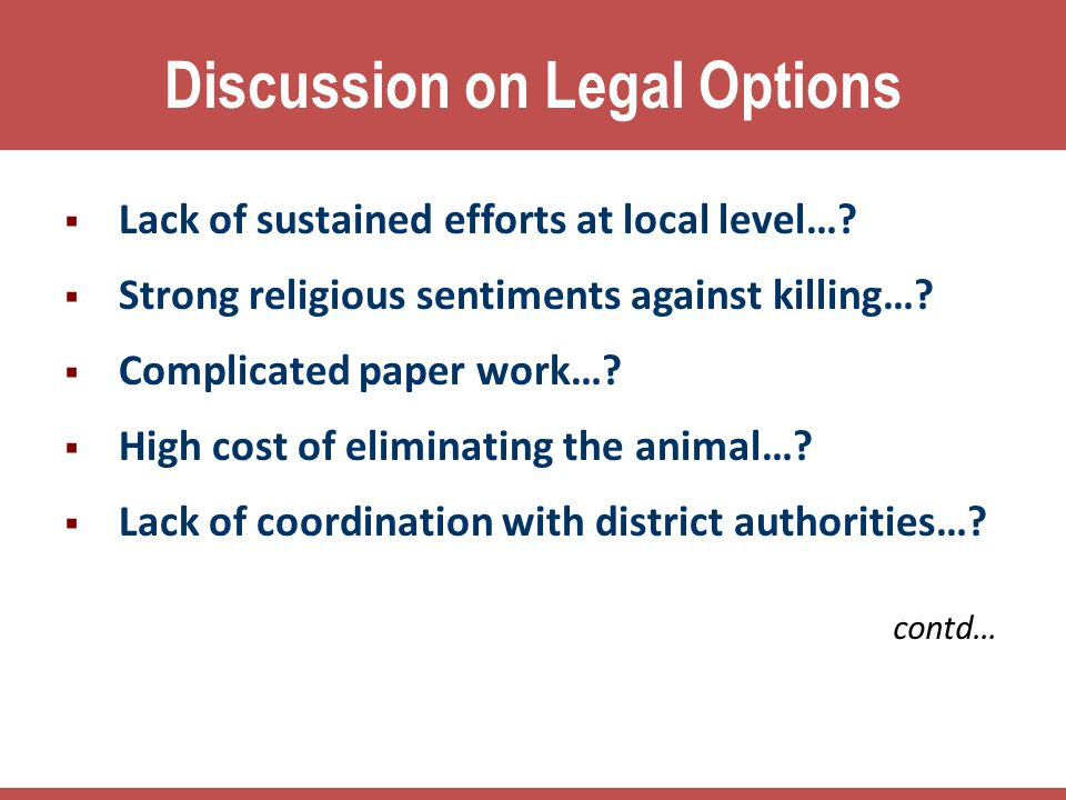 Discussion on Legal Options