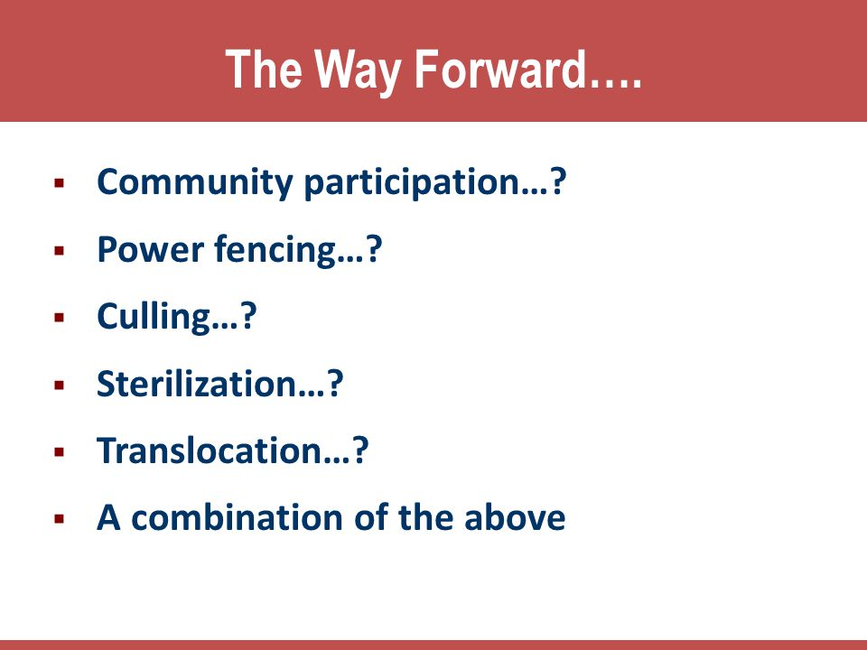 The Way Forward…. Community participation… Power fencing… Culling…