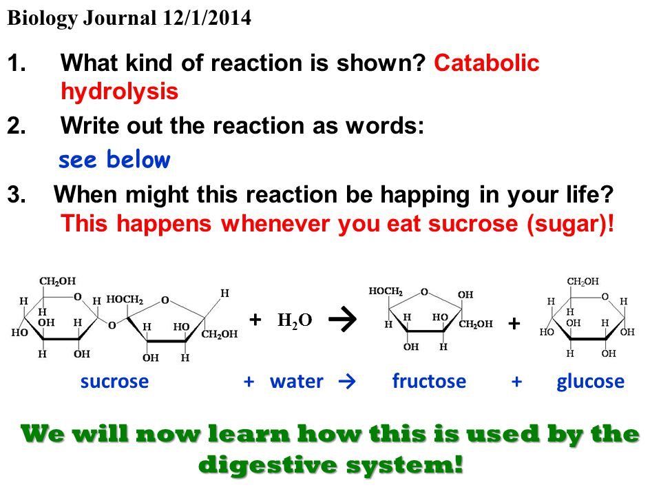 how to write a reaction journal