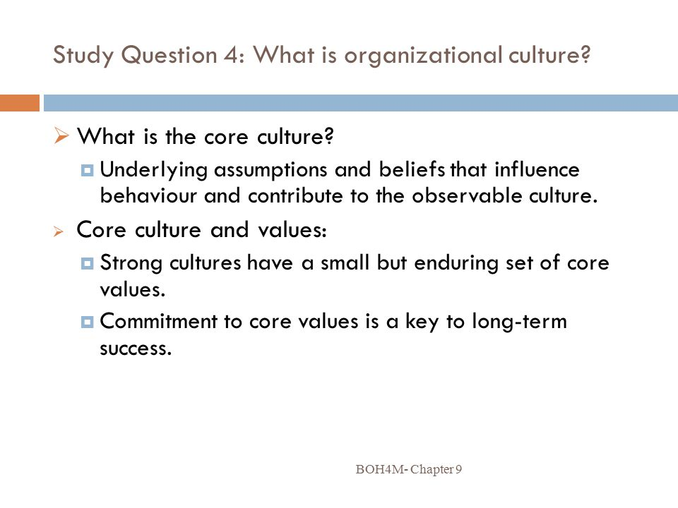 Study Question 4: What is organizational culture