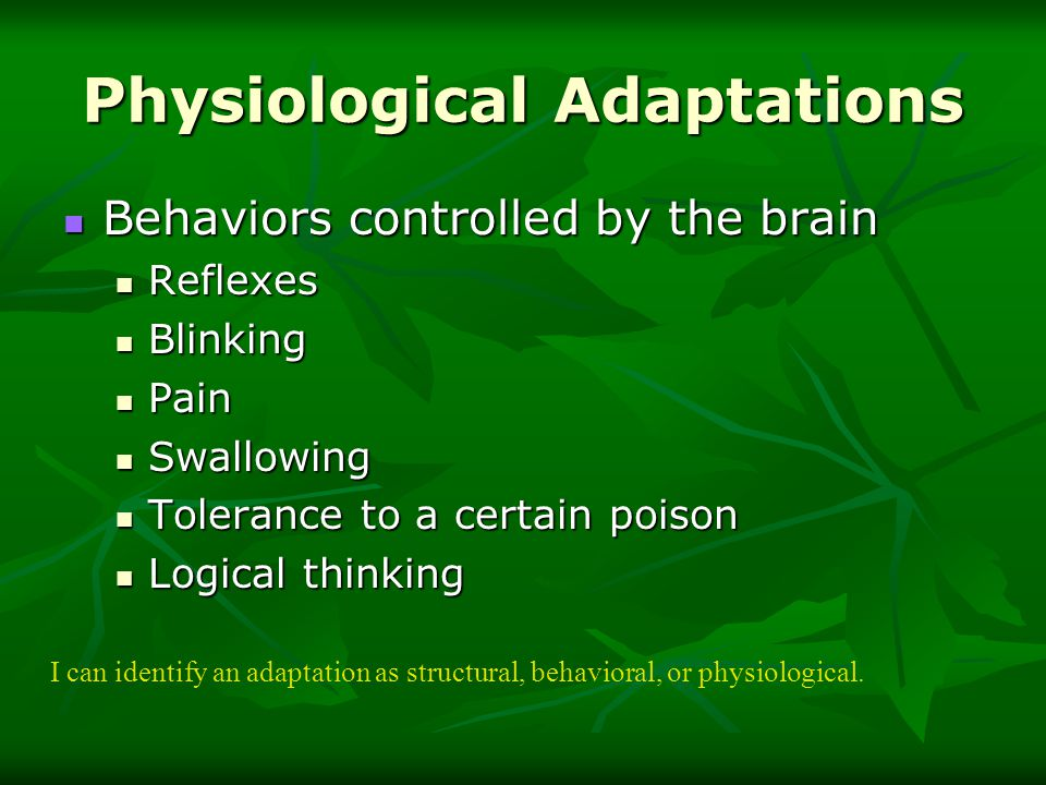 Examples Of Physiological Adaptations Images Example Cover Letter