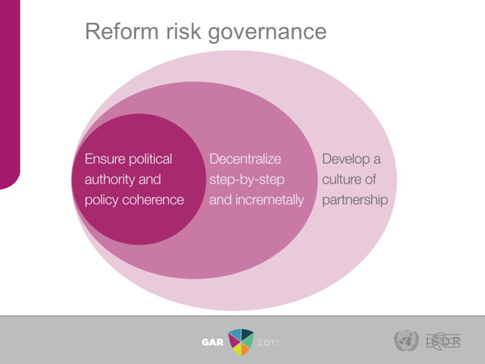 Reform risk governance