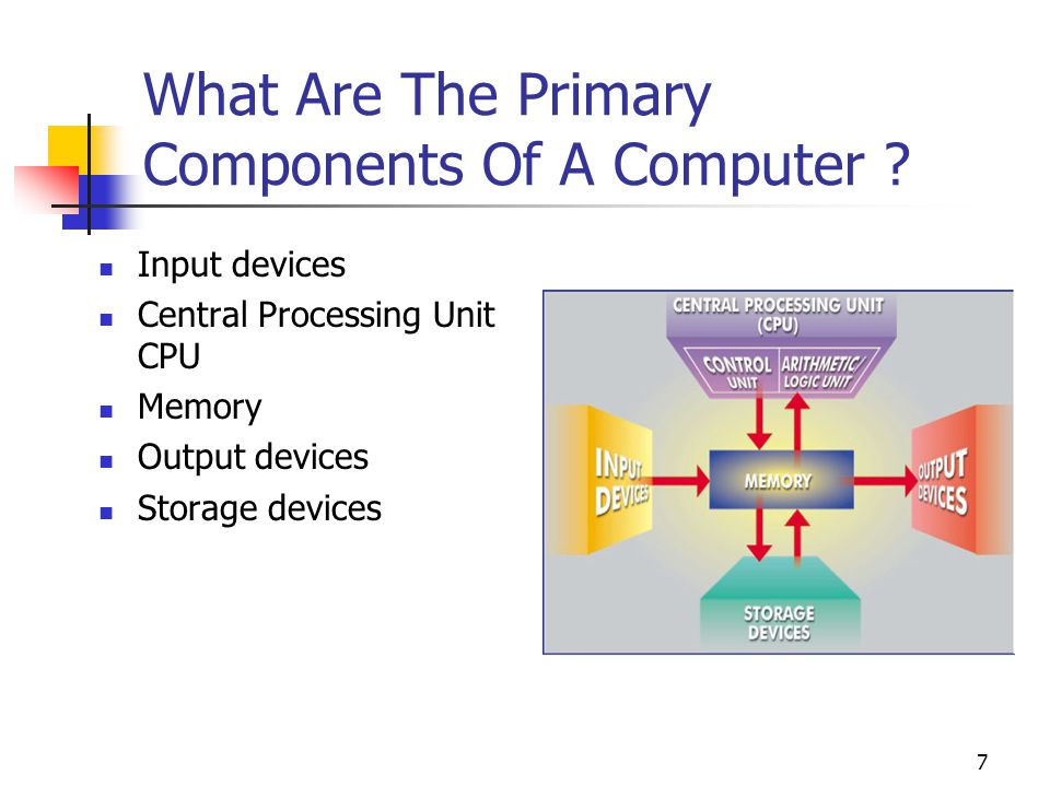 What Are The Primary Components Of A Computer