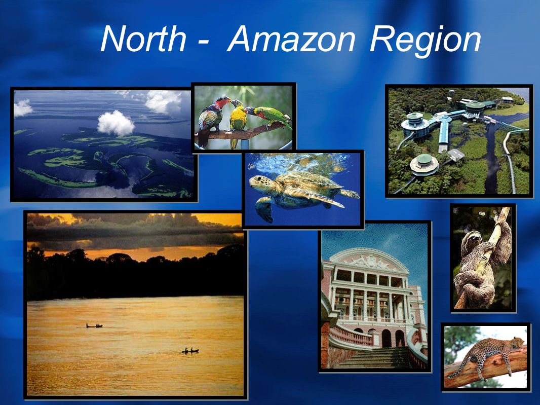 North - Amazon Region