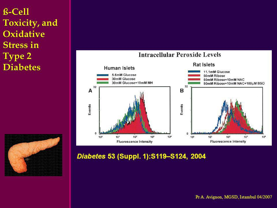 ß-Cell Toxicity, and Oxidative Stress in Type 2 Diabetes