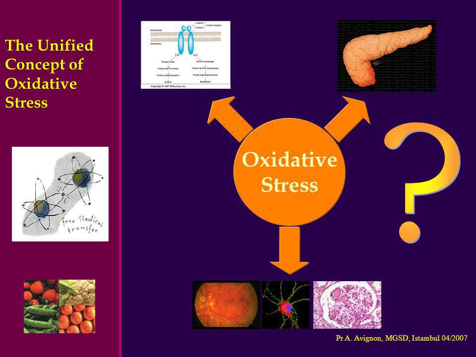 The Unified Concept of Oxidative Stress