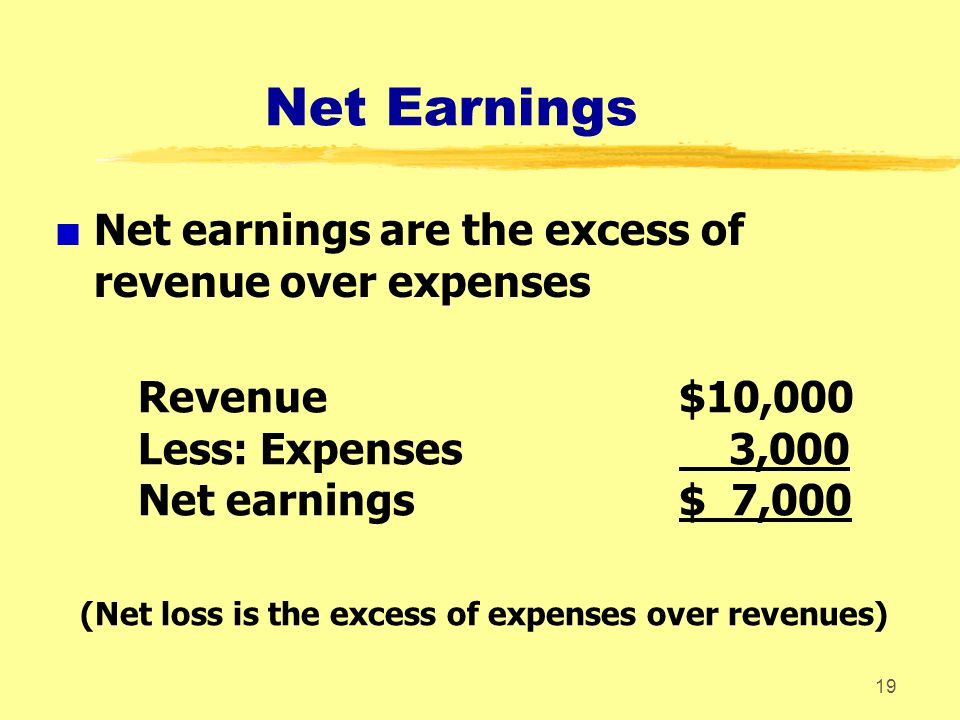 (Net loss is the excess of expenses over revenues)